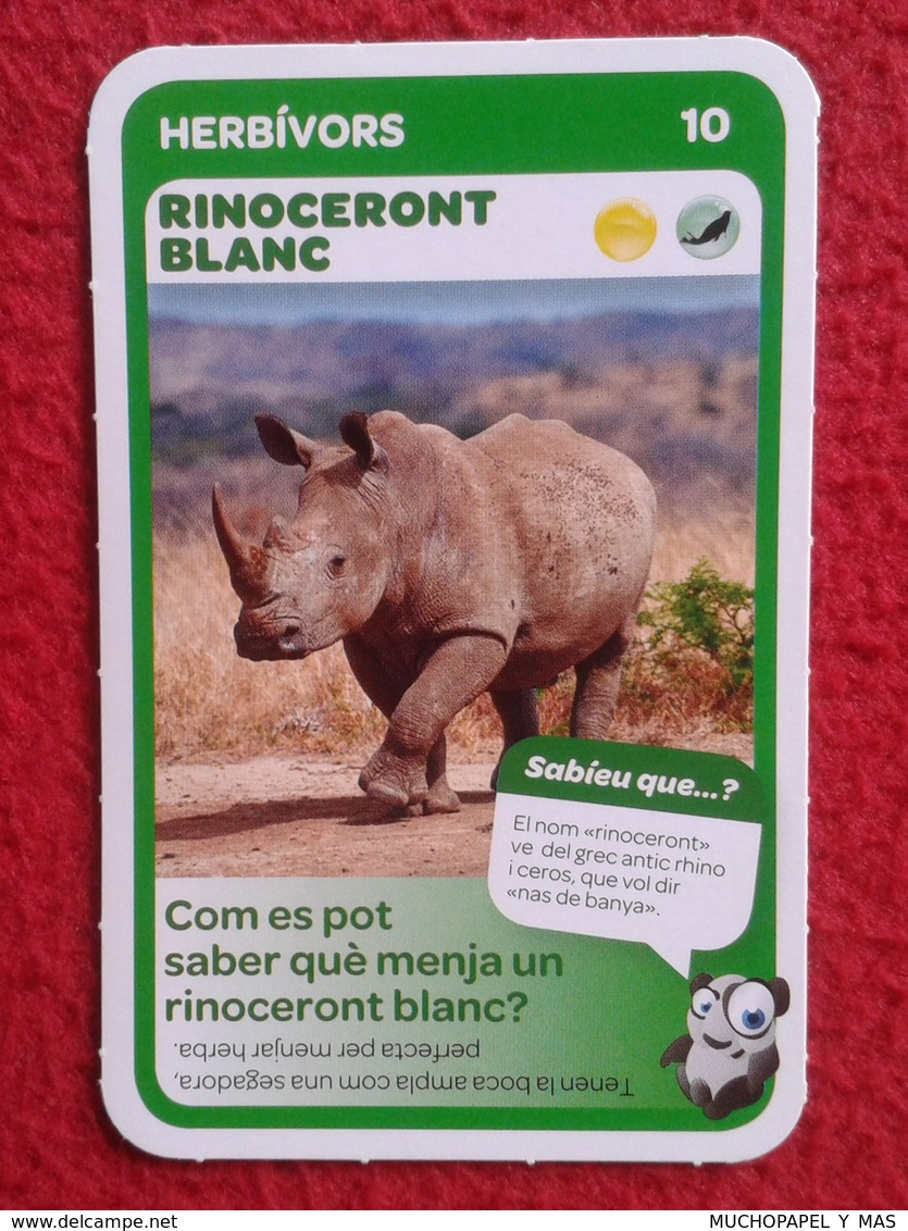 SPAIN ANTIGUO CROMO RARE OLD COLLECTIBLE CARD EL RINOCERONTE BLANCO RHINO RHINOCEROS RHINOS RHINOCEROSES FRIGO VER FOTOS - Cromos