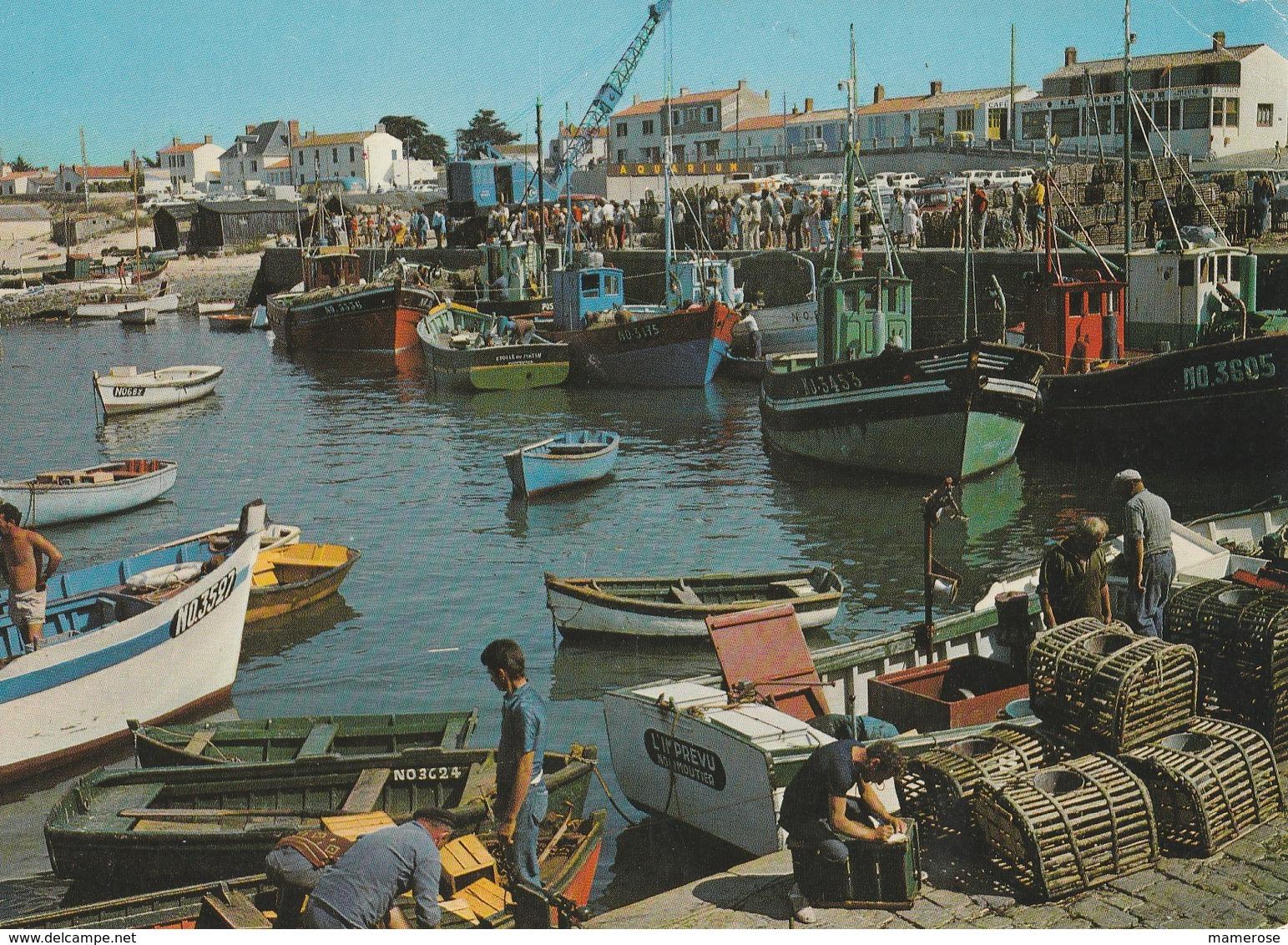 LES SABLES-D'OLONNE (85). Le Port Et La Chaume. Pêcheur Rangeant Des Filets (Métiers: Pêche) - Sables D'Olonne