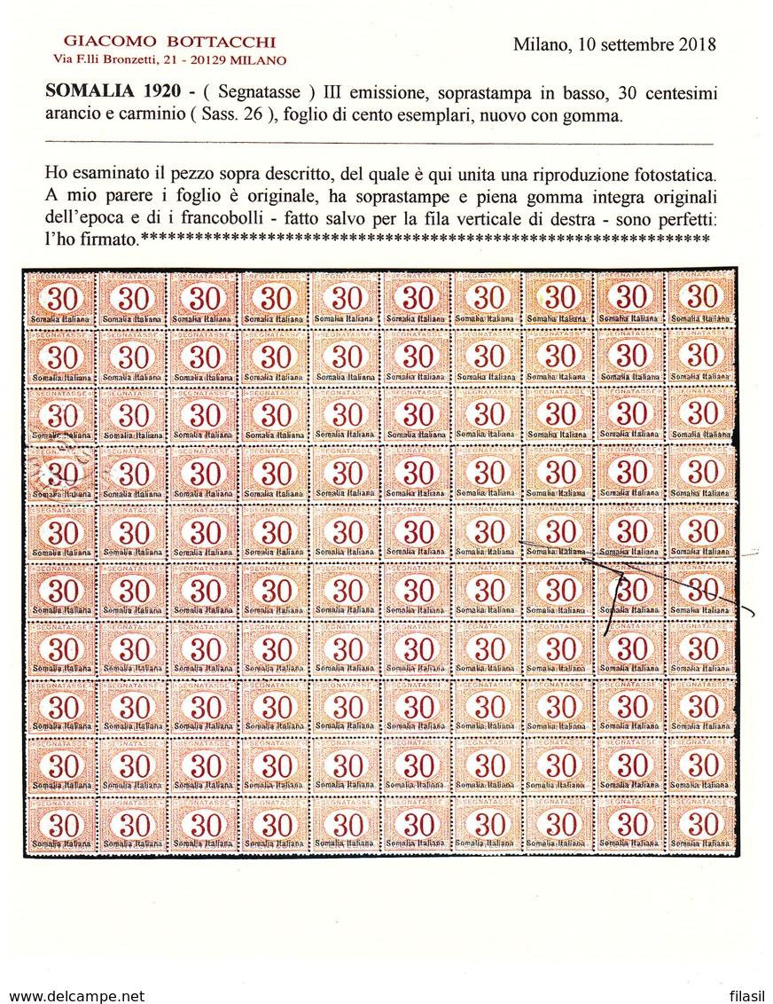 SI53D Italia Italy  Regno Colonie Segnatasse 1920 30 C.Soprast. Somalia Italiana, In Basso MNH Foglio Da 100 Certificato - Somalia