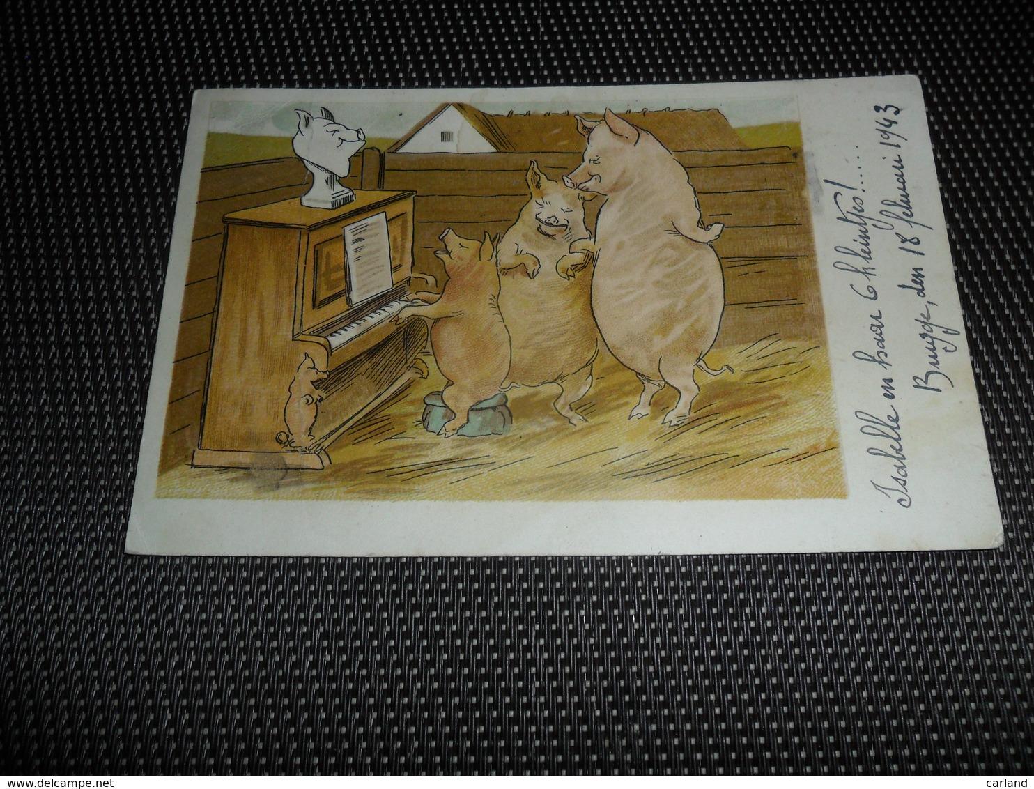 Cochon    Zwijn  Varken   Cochons Personalisés - Cochons
