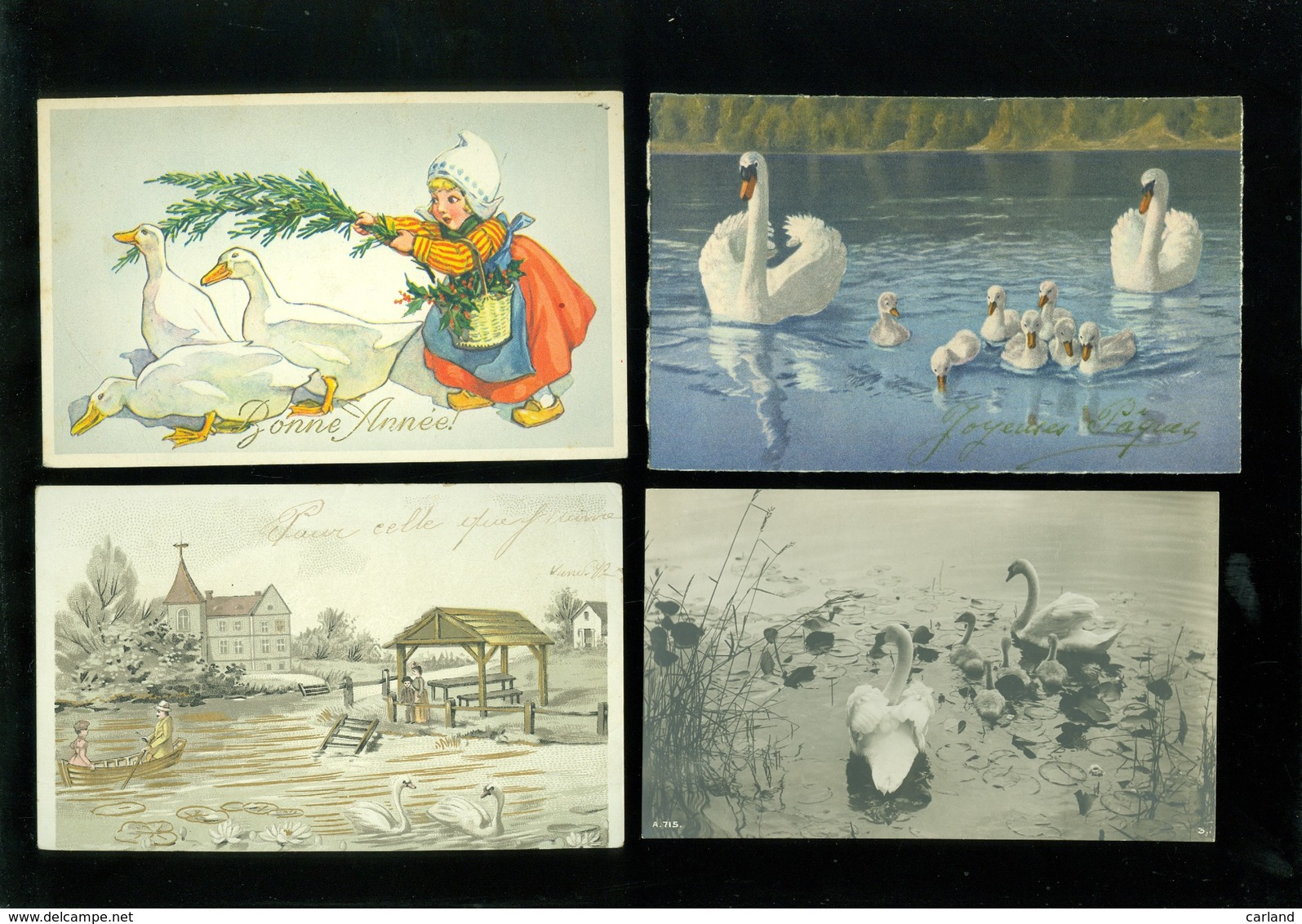 Beau Lot De 20 Cartes Postales De Fantaisie  Cygne  Cygnes   Mooi Lot Van 20 Postkaarten Van Fantasie  Zwaan  Zwanen - Cartes Postales