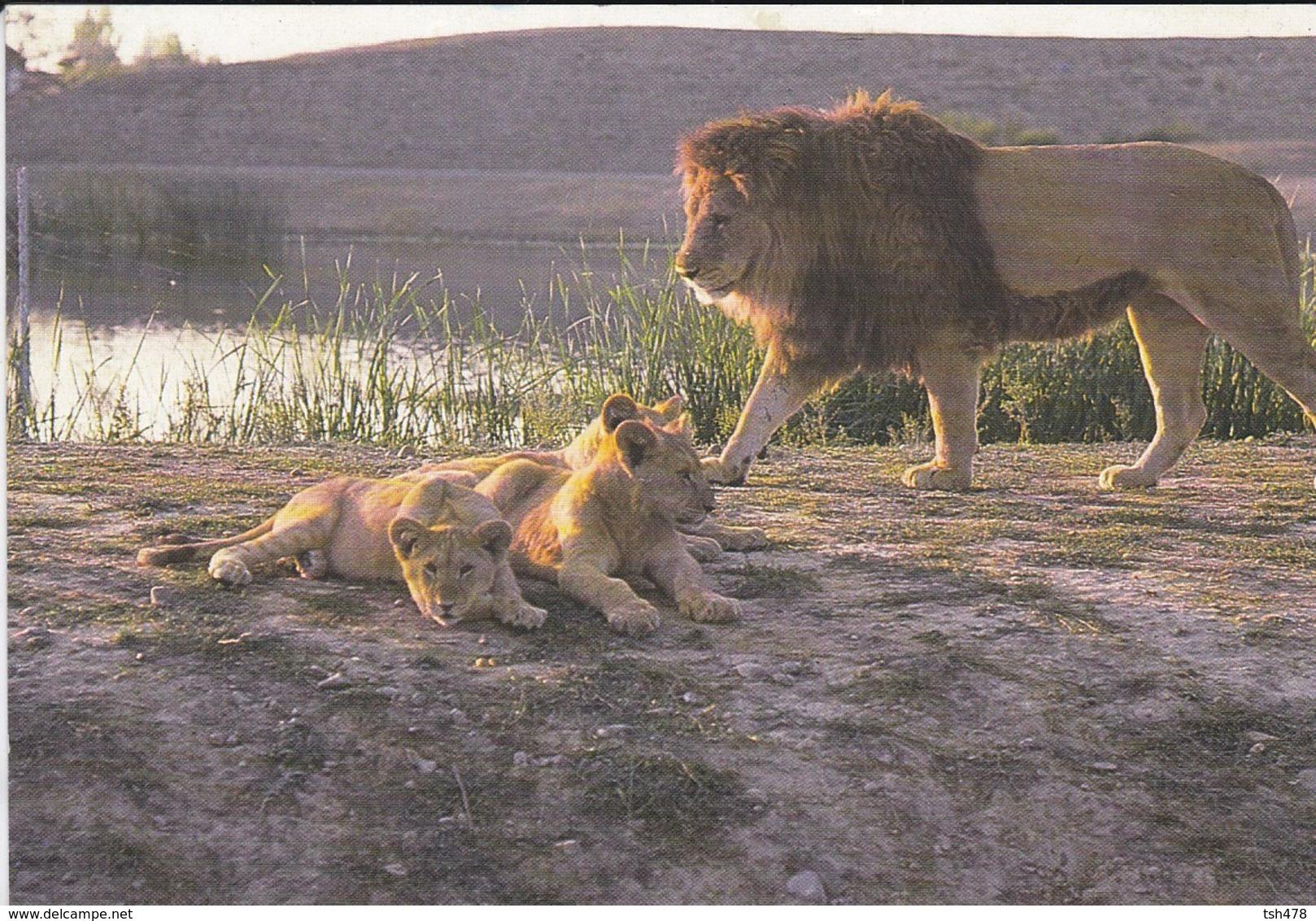 31---PLAISANCE DU TOUCH--AFICAN SAFARI--( Lionne Lionceaux Lion )--voir 2 Scans - Lions