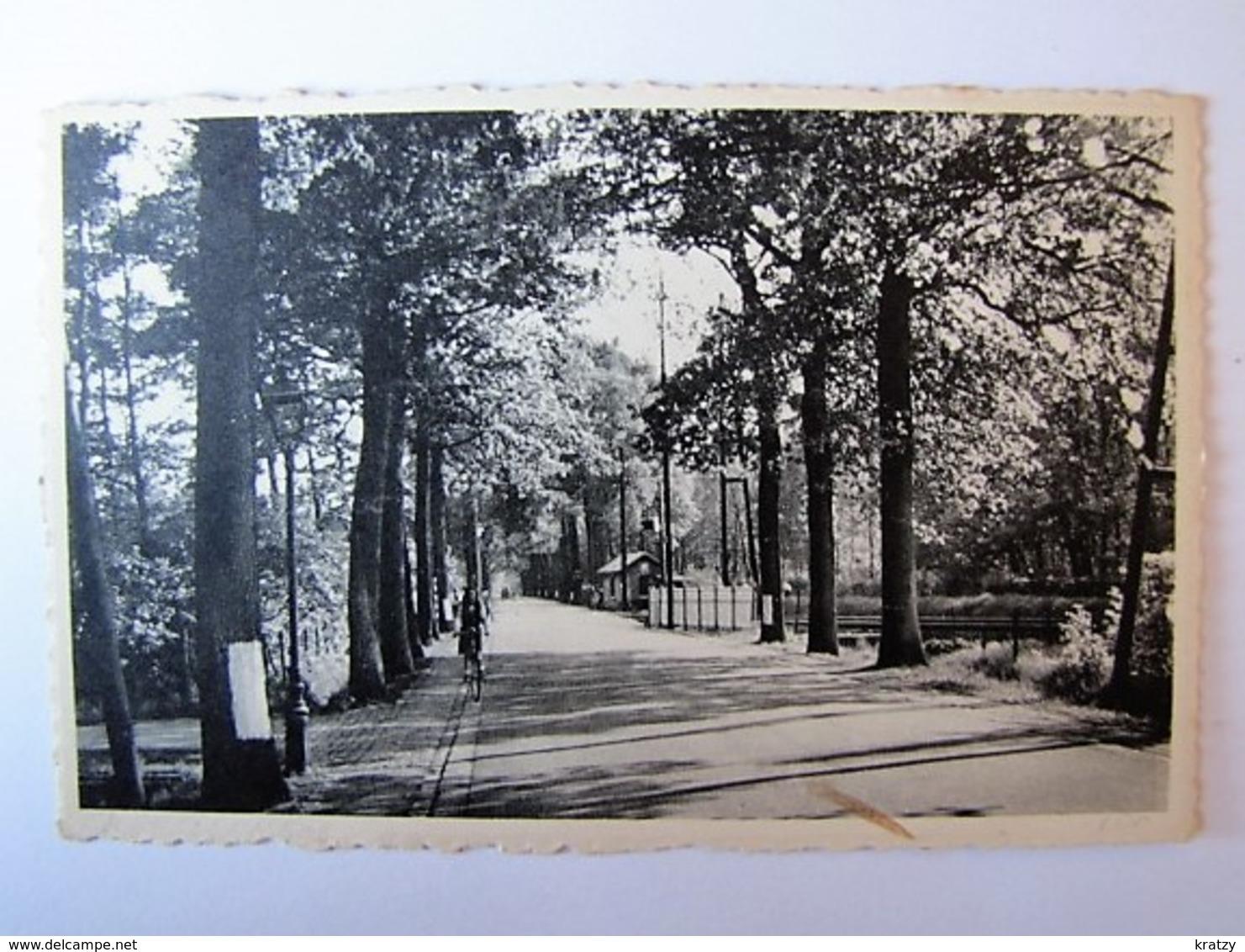 BELGIË - ANTWERPEN - KAPELLENBOS - Steenweg - 1955 - Kapellen