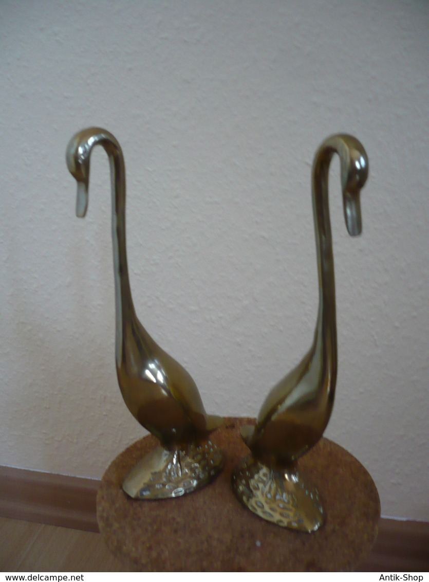 Stehendes Schwanen Paar Aus Messing  (751) - Sculptures