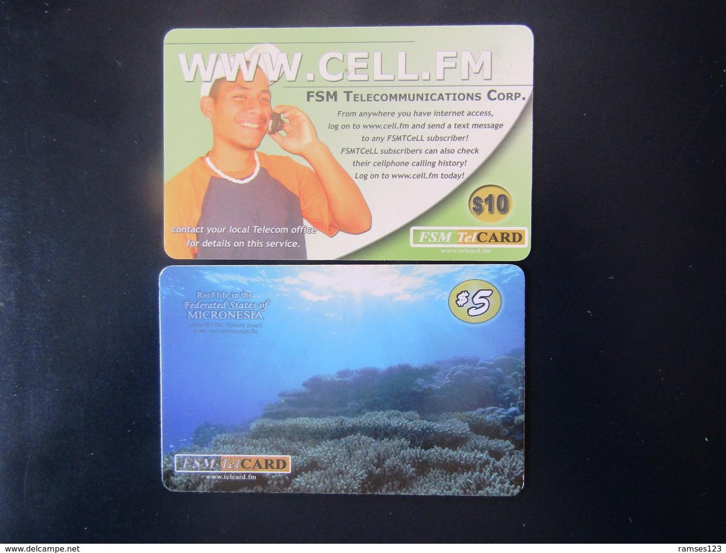 2 CARDS  MICRONESIE - Micronésie