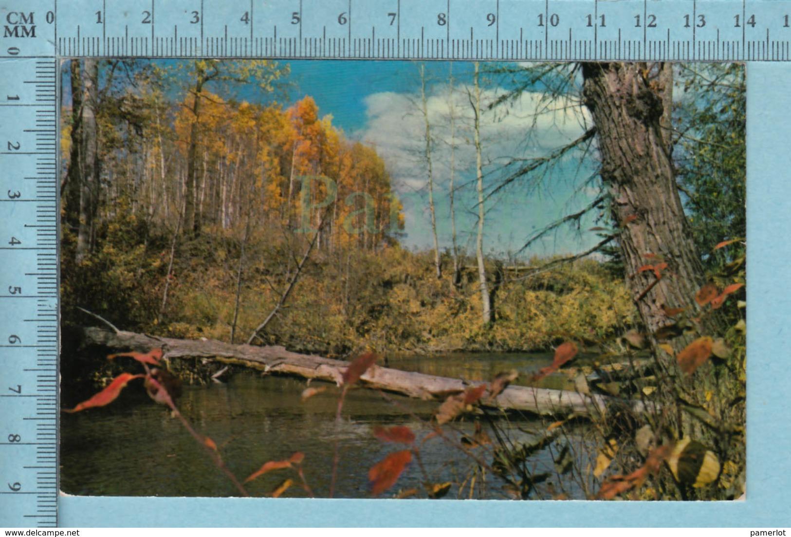 Val- Morin Quebec -Paysage Bridge Over A Small Creek   , Servie En 1963 - Quebec