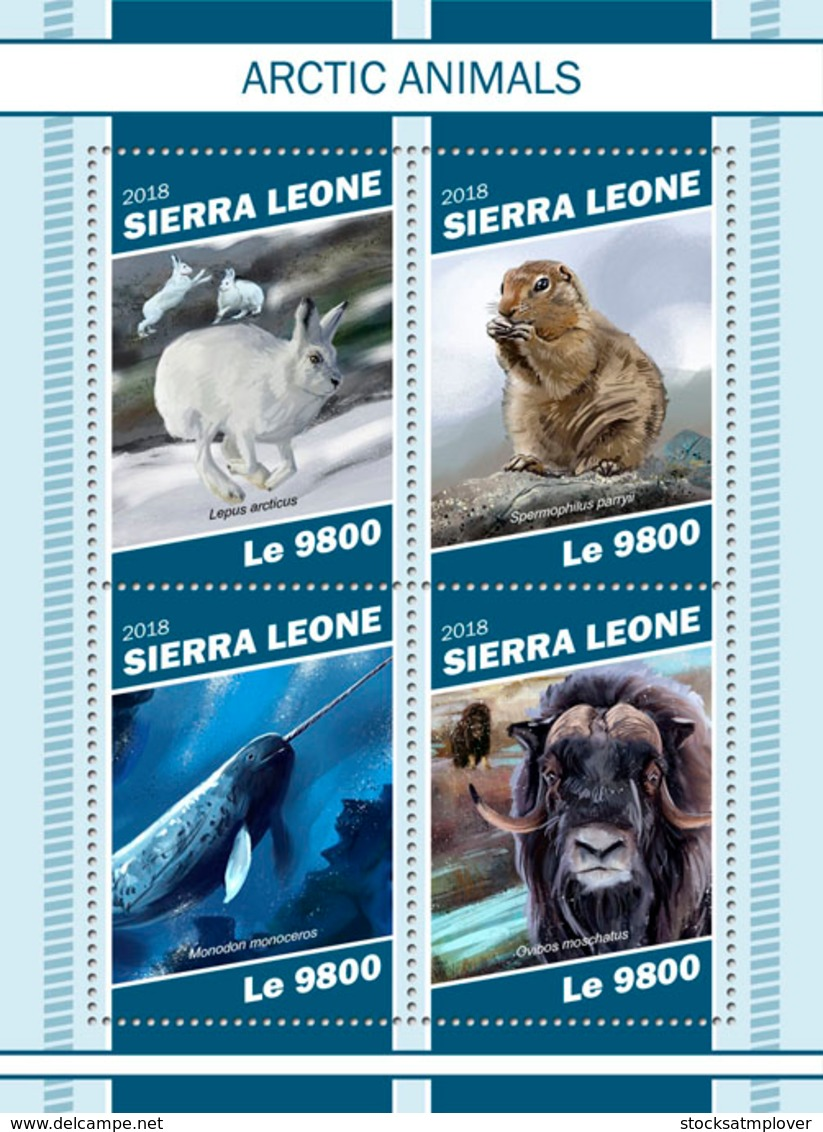 Sierra  Leone  2018  Fauna Arctic Animals Musk Ox  S201901 - Sierra Leone (1961-...)