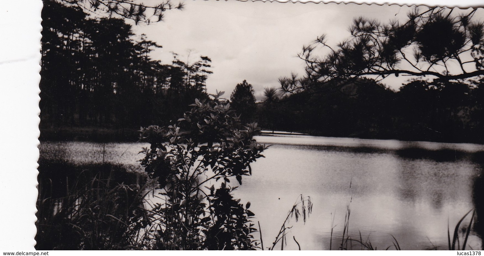 VIET- NAM - DALAT - Lac Du Soupir / PAS CARTE POSTALE / PHOTO VERITABLE FORMAT CP - Viêt-Nam