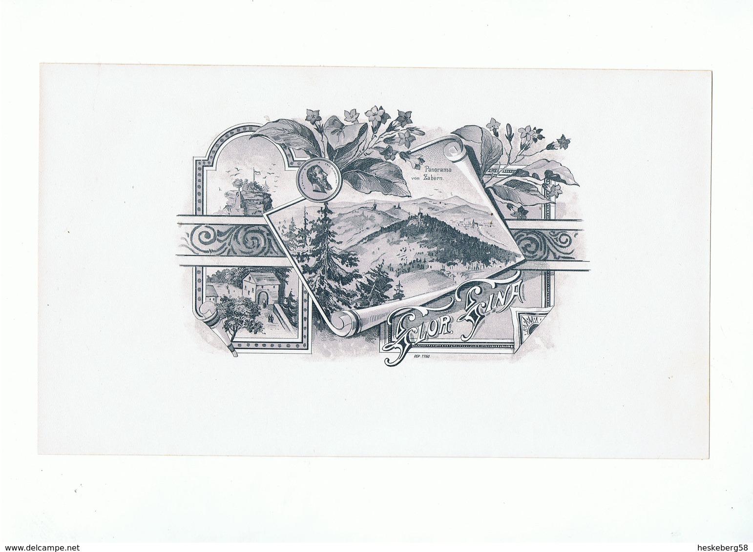 Etiquette 6) Panorama Von Zabern ( Dep. 7760) - Etiquettes