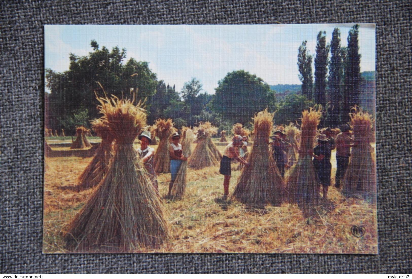 Agriculture : Les Moissons - Cultures