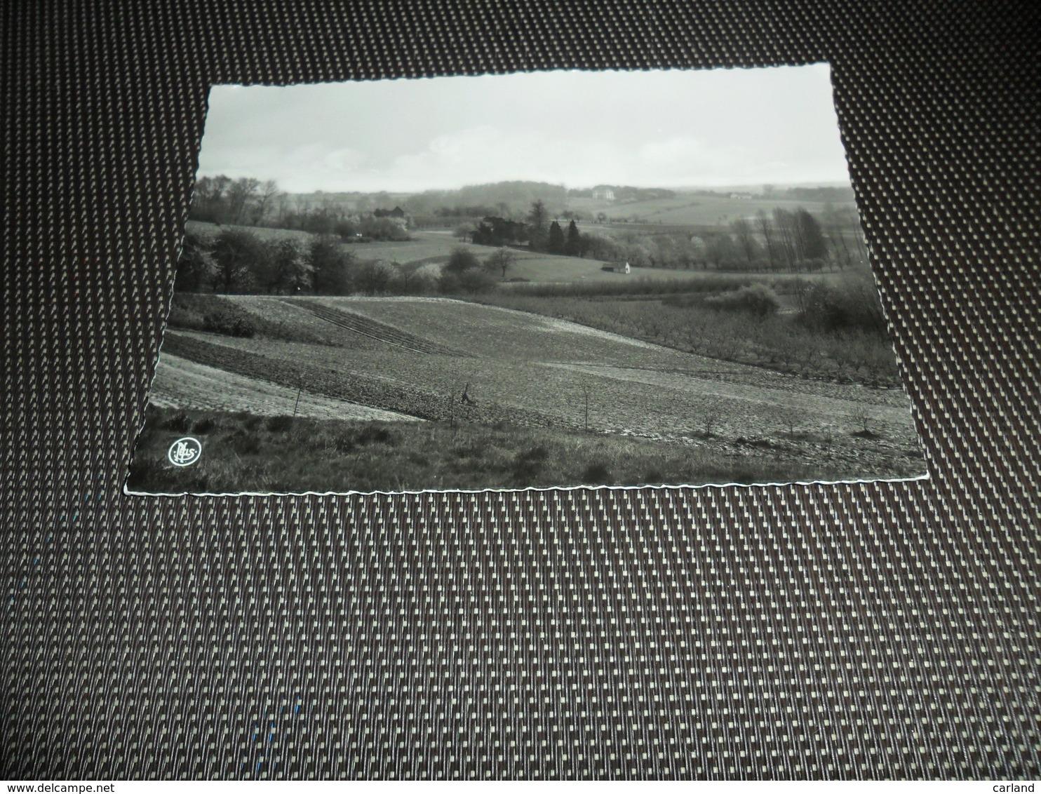 Assche  Asse   Panorama - Asse