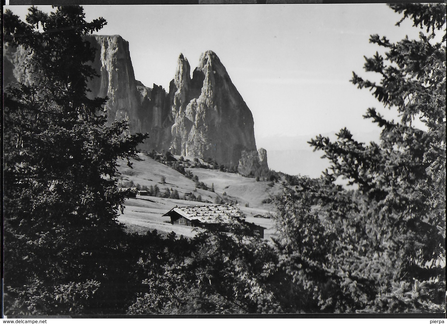 DOLOMITI - ALPE DI SIUSI - LO SCILIAR - FOTOEDIZ. GHEDINA - NUOVA - Alpinisme