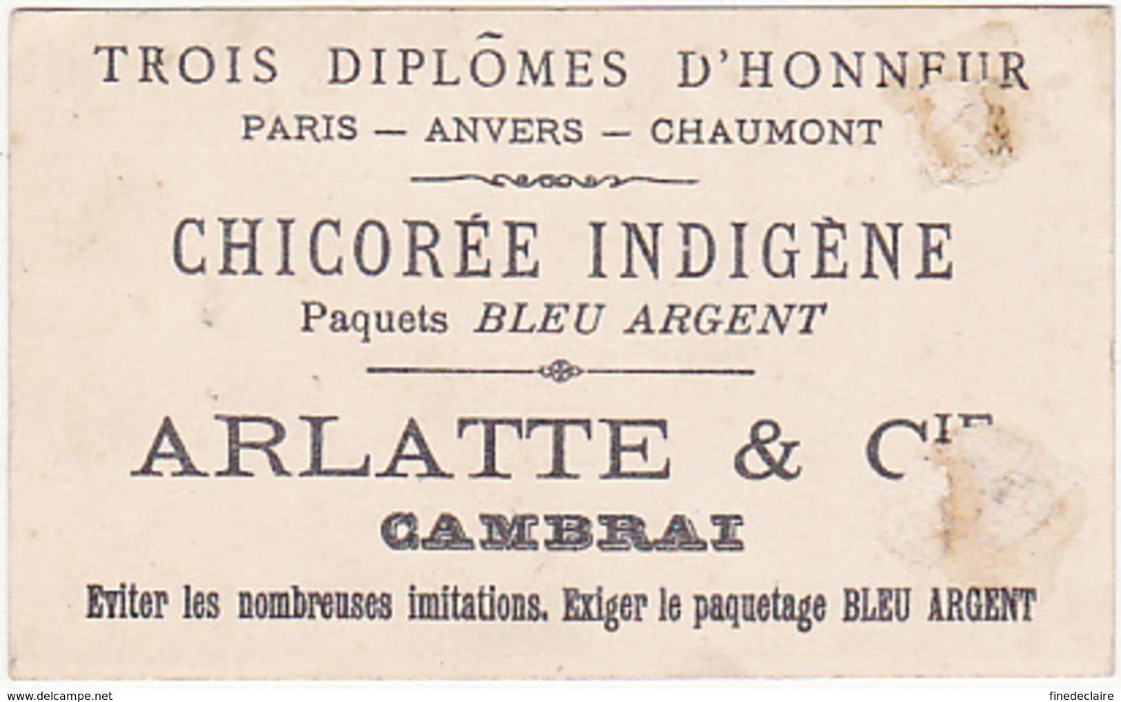 Chromo - Chicorée Indigène Bleu Argent, Arlatte - Voici Mon Parapluie - Thé & Café