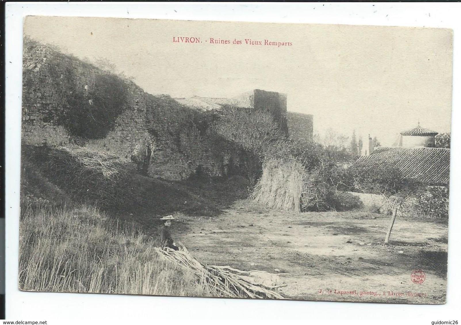 Livron,ruines Des Vieux Remparts - France