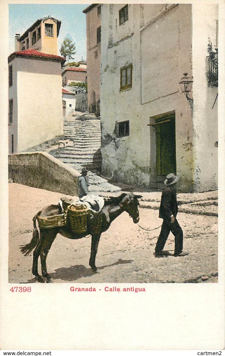 GRANADA CALLE ANTIGUA ESPANA PHOTOCHROME 1900 ESPAGNE - Granada
