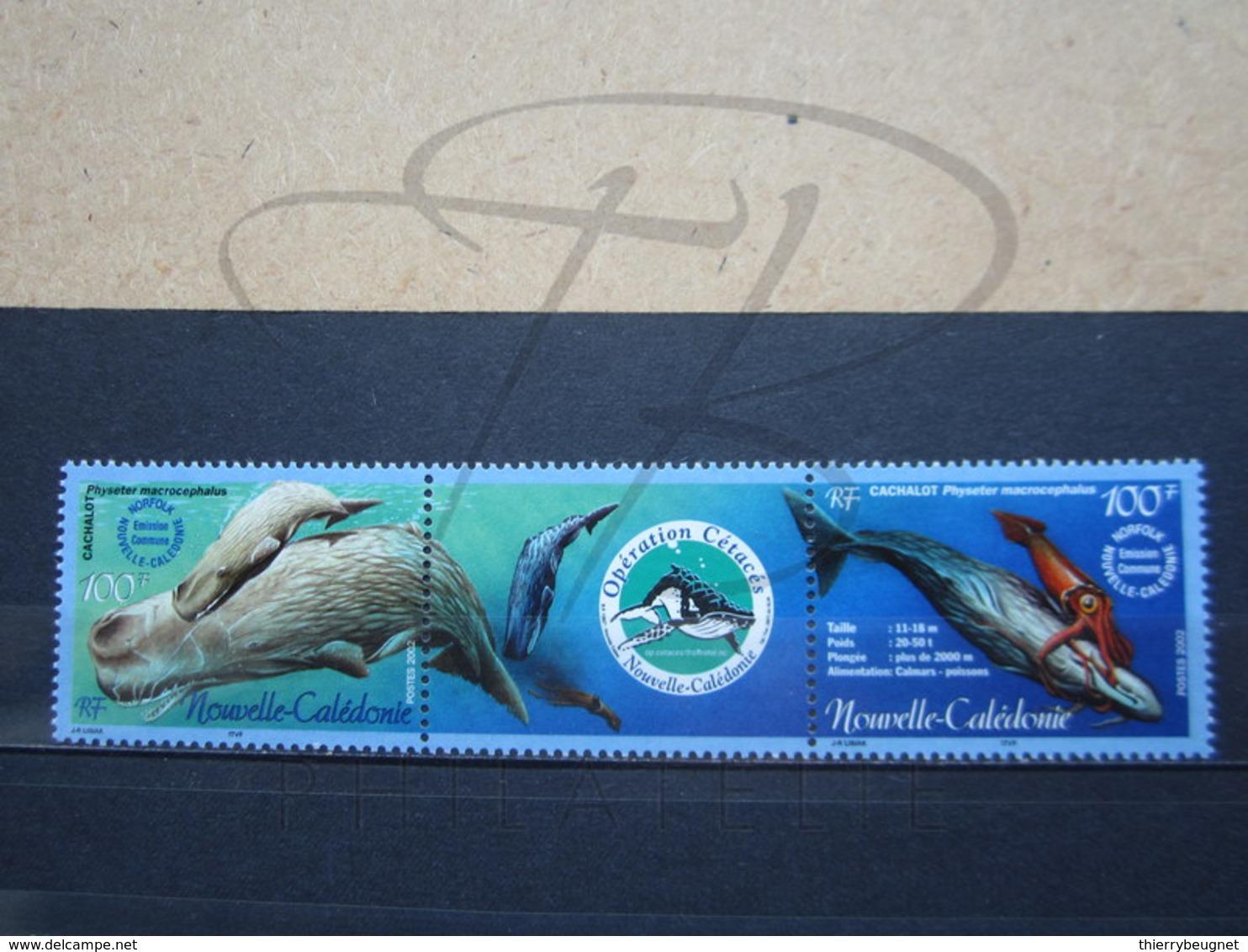 VEND BEAUX TIMBRES DE NOUVELLE-CALEDONIE N° 876 + 877 , XX !!! (b) - New Caledonia