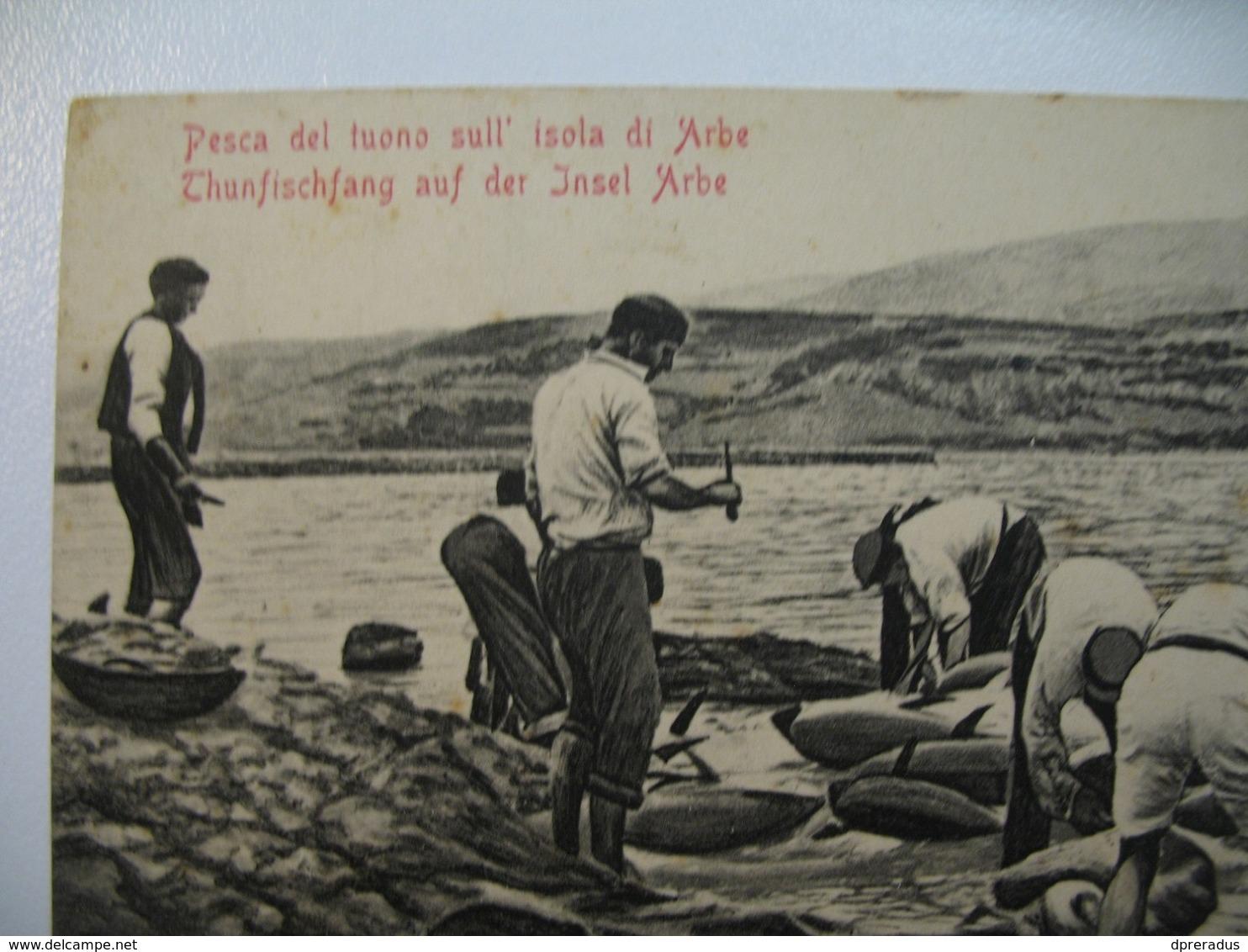 Croatia Arbe Rab Fischer Thunfischang 1924. Fish Ship Post SUSAK - Croatia