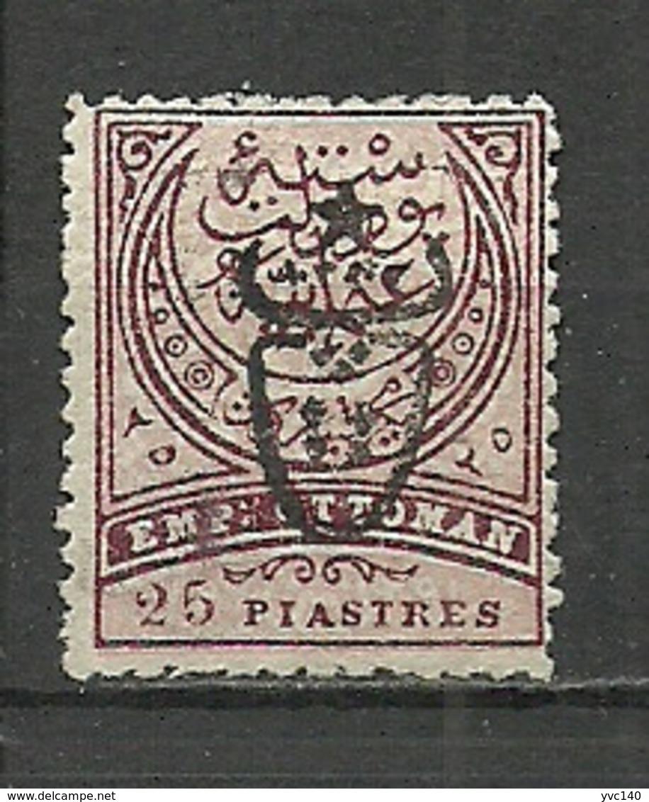 Turkey; 1917 Overprinted War Issue Stamp 25 K. - Unused Stamps