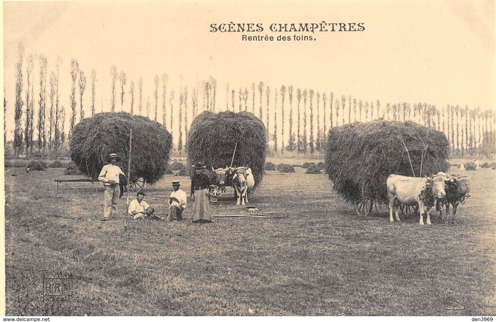 Scènes Champêtres - Rentrée Des Foins - Attelage De Boeufs - Cecodi N'53 - Cultures