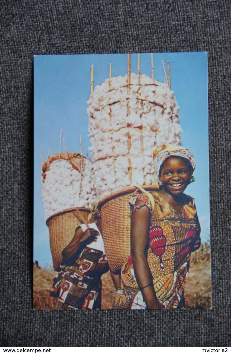 AFRIQUE : La Récolte Du COTON - Cultures