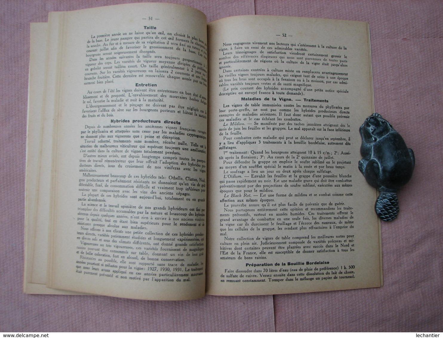 Trés Beau Catalogue De 1933  Des ASPERGES D' ARGENTEUIL , Fleury Et Gdre 81 Pages Voir Autres Productions TBE - C. Piante Ortive & Legumi