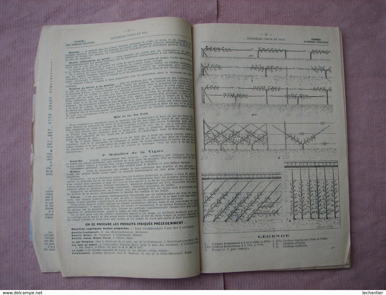 Catalogue 1909/1910 Pépinières Du Val D'Aulnay  CROUX Et FILS  193 Pages + Courrier BE D'usage - F. Alberi & Arbusti