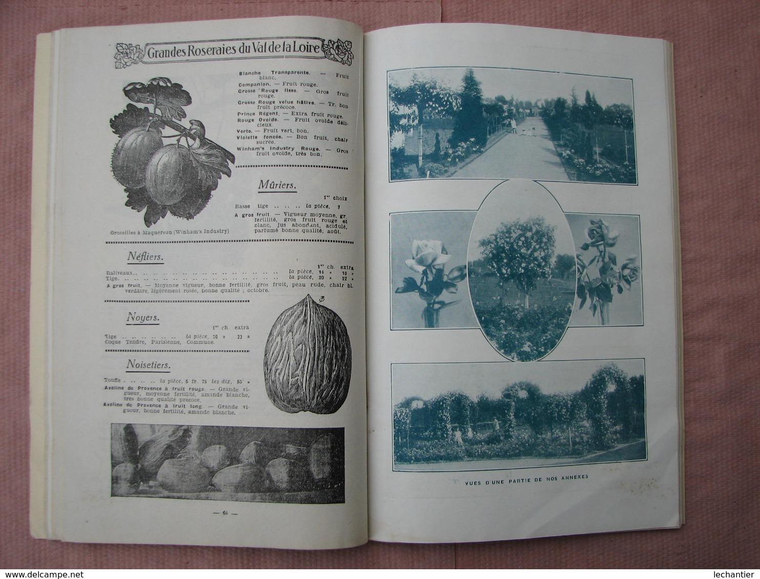GRANDES  ROSERAIES Du VAL De LOIRE  1925  160 Pages 15X23 + Bon De Commande Avec Enveloppe   T.B.E. - F. Arbres & Arbustes