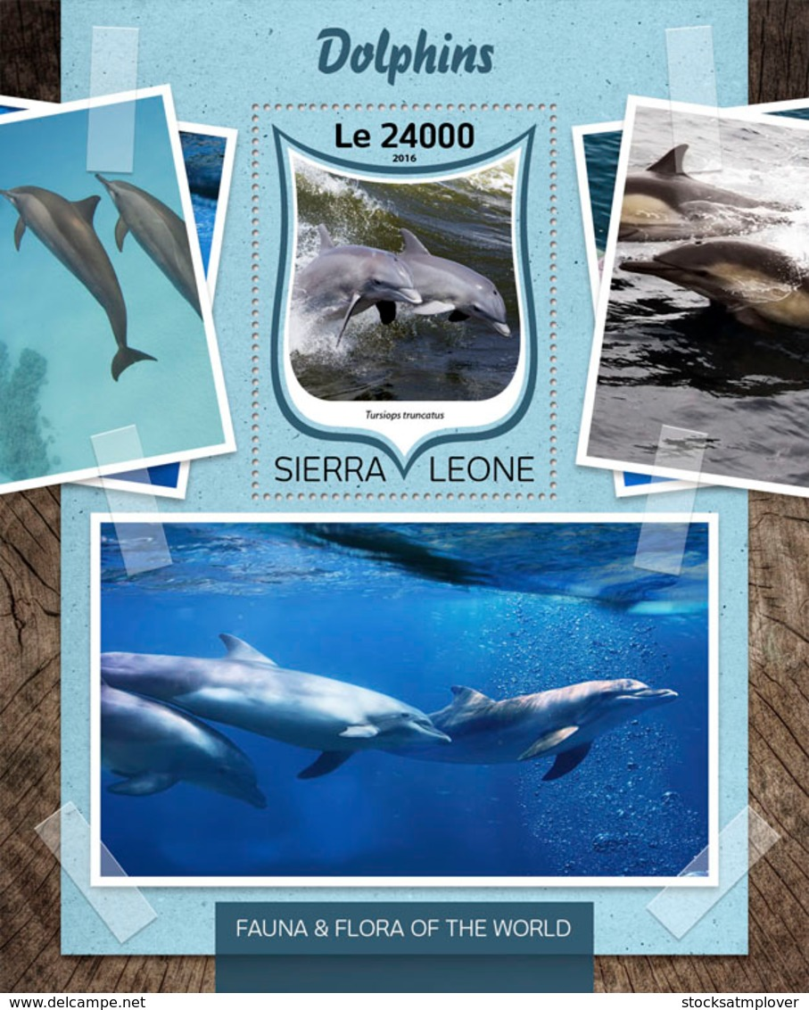 Sierra Leone 2016 Fauna  Dolphins - Sierra Leone (1961-...)