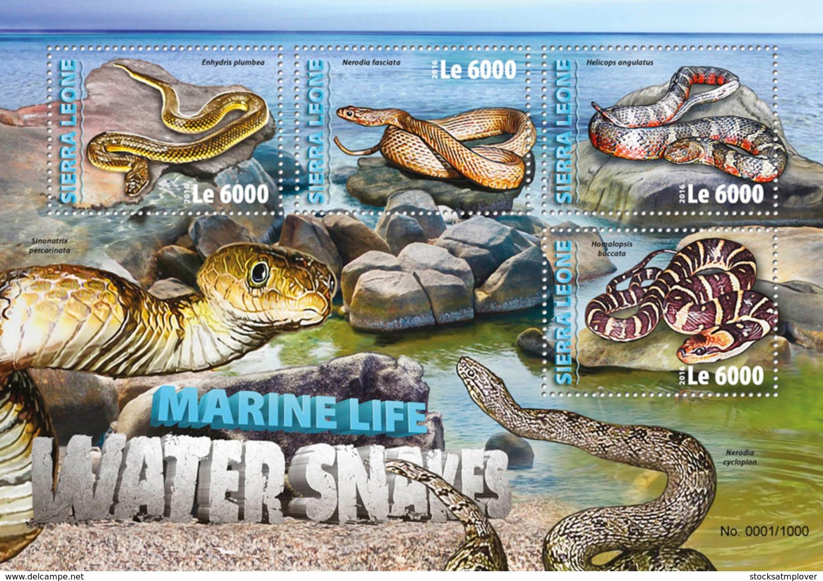 Sierra Leone 2016 Fauna  Water Snakes - Sierra Leone (1961-...)