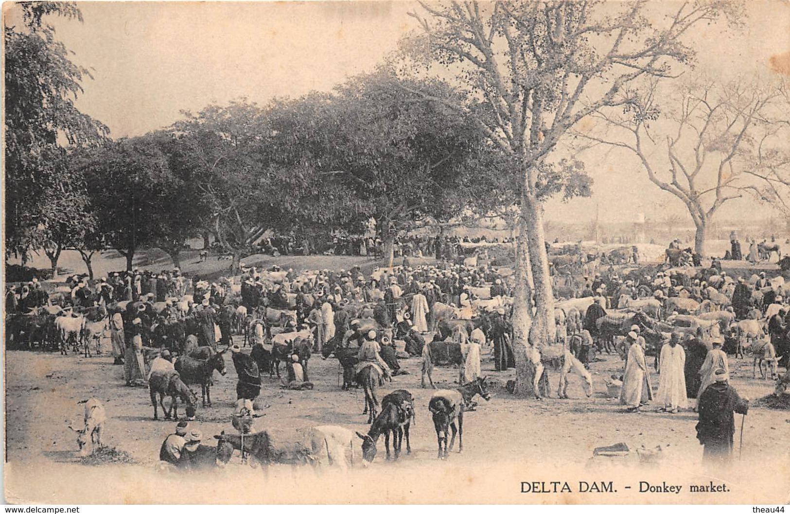 ¤¤  -  EGYPTE   -   DELTA DAM   -  Donkey Market   -  ¤¤ - Egipto