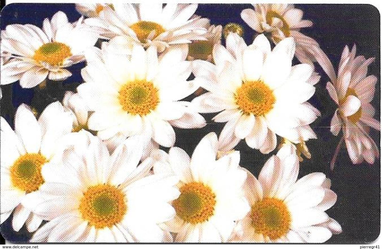 -CARTE-PUCE-ROUMANIE-50000 Lei-2001-MARGUERITES BLANCHES-TBE - Fleurs