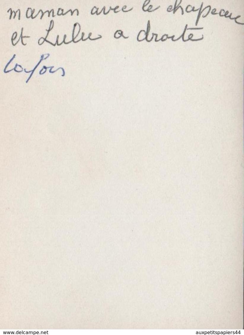 Photo Originale Portrait Des Femmes De La Ferme Lafon Sur La Calèche, Attelage Ou Carriole Vers 1930 - Personnes Identifiées