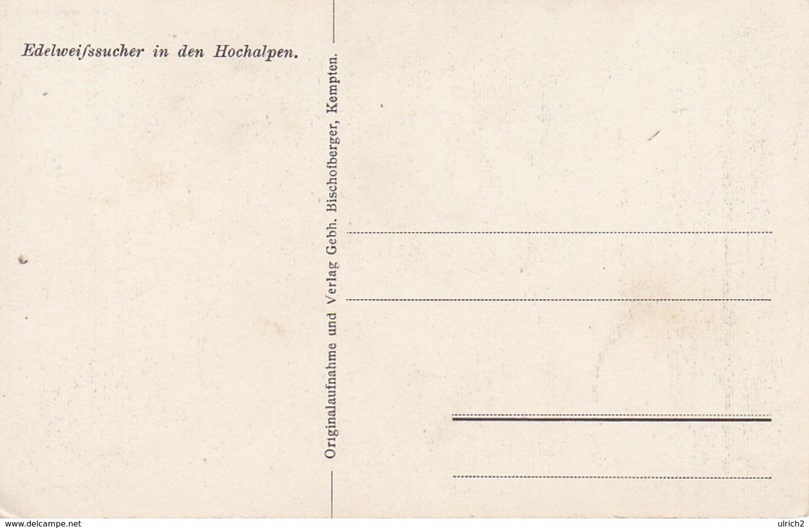 AK Edelweißsucher In Den Hochalpen (40012) - Alpinisme