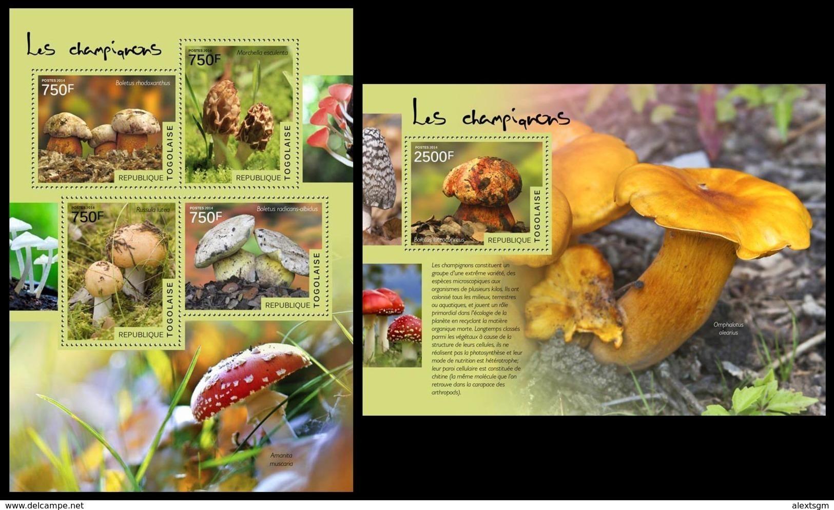 TOGO 2014 - Mushrooms - YT 4138-41 + BF899; CV=31 € - Pilze