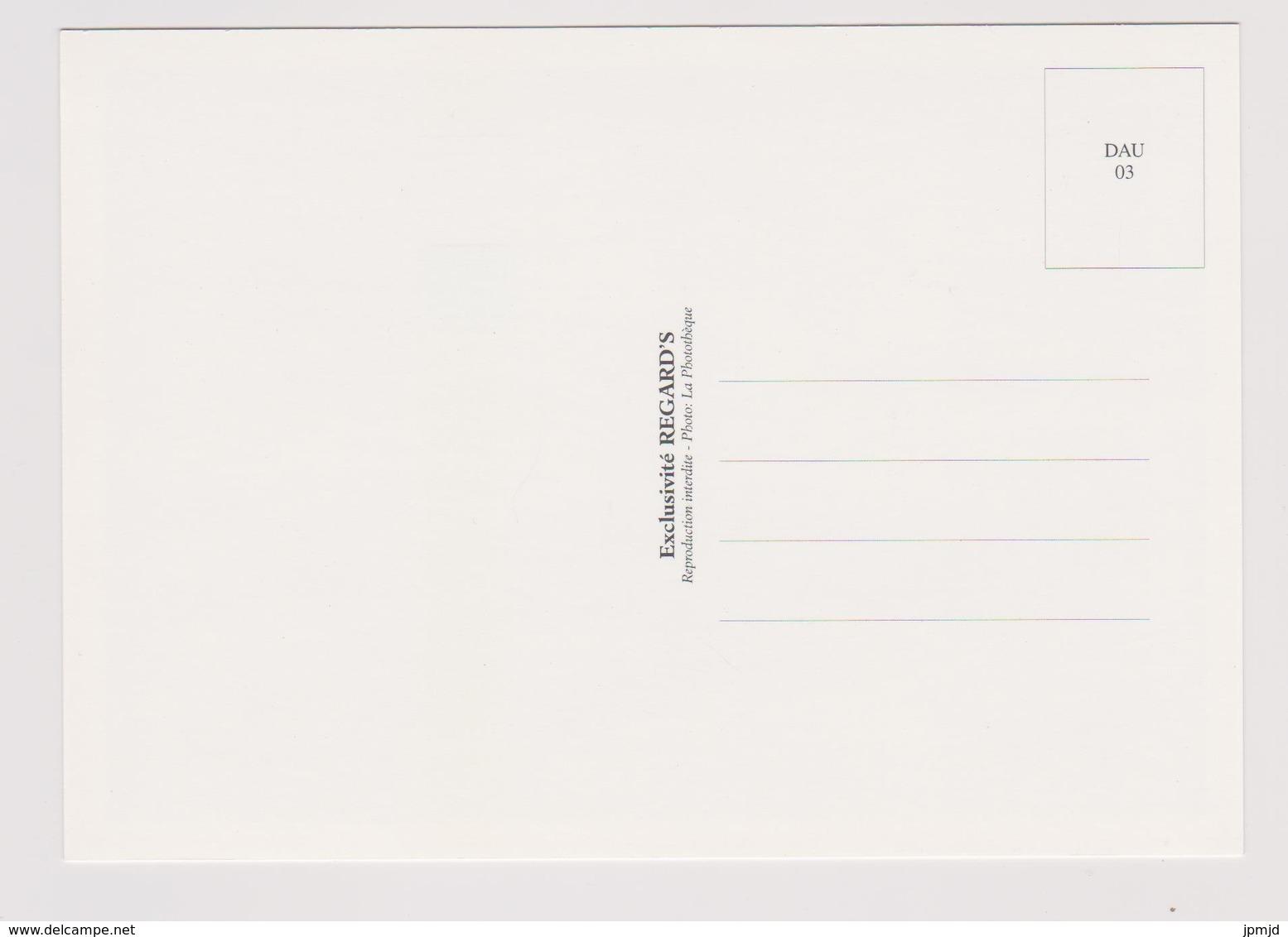 Dauphin - Exclusivité REGARD'S N° DAU 03 - Dauphins
