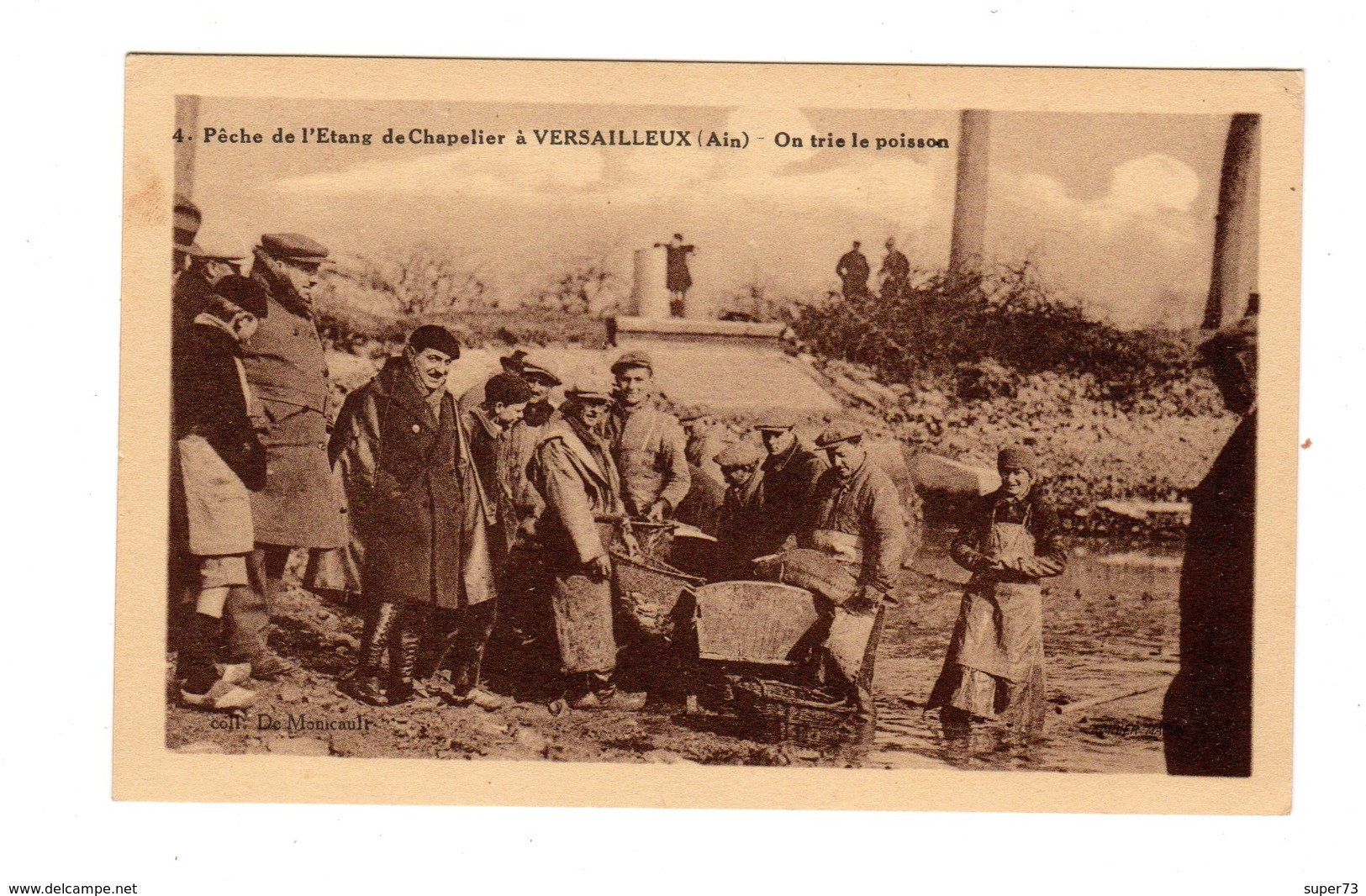 CPA 01 - Pêche De L'etang De Chapelier à Versailleux ( Ain ) On Trie Le Poisson - Autres Communes