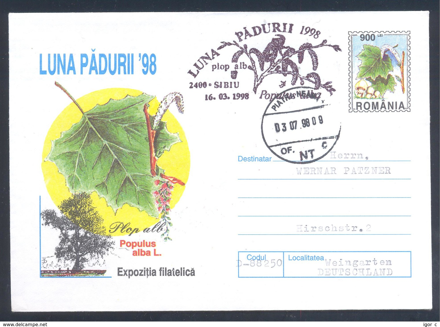 Romania 1998 Postal Stationery Cover Flora Mushroom Pilz Champignon Fungi; Tree Silver Poplar (Populus Alba L.) - Pilze