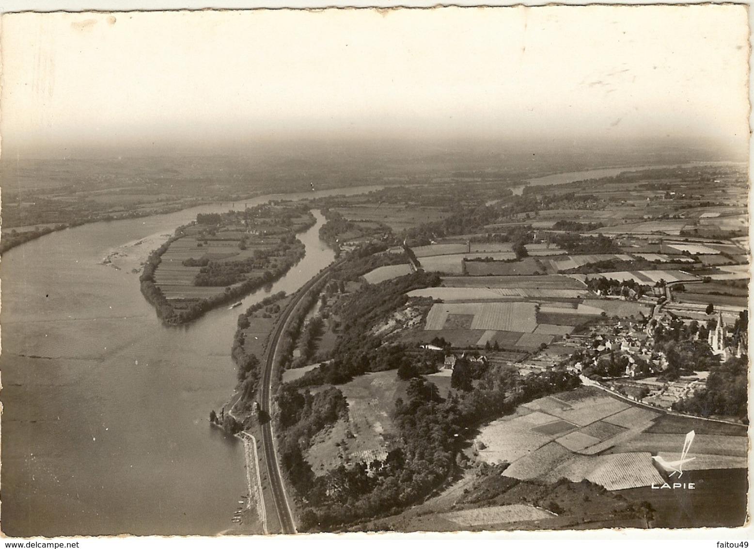 Cpsm Gf -  EPIRE - Environs De Béhuard  En Avion Vue Panoramique De L Ile De Béhuard   117 - Autres Communes