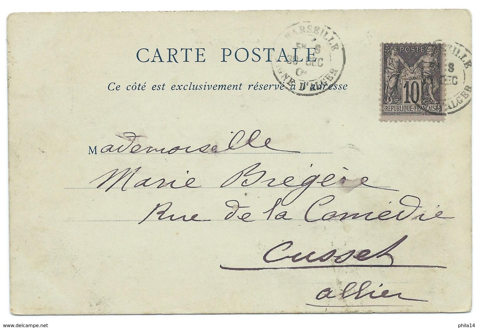 CPA ALGER 1900 / LE JARDIN D'ESSAI  / CAD MARSEILLE LIGNE D'ALGER POUR CUSSET ALLIER / 10c SAGE NOIR SUR LILAS TYPE III - Alger
