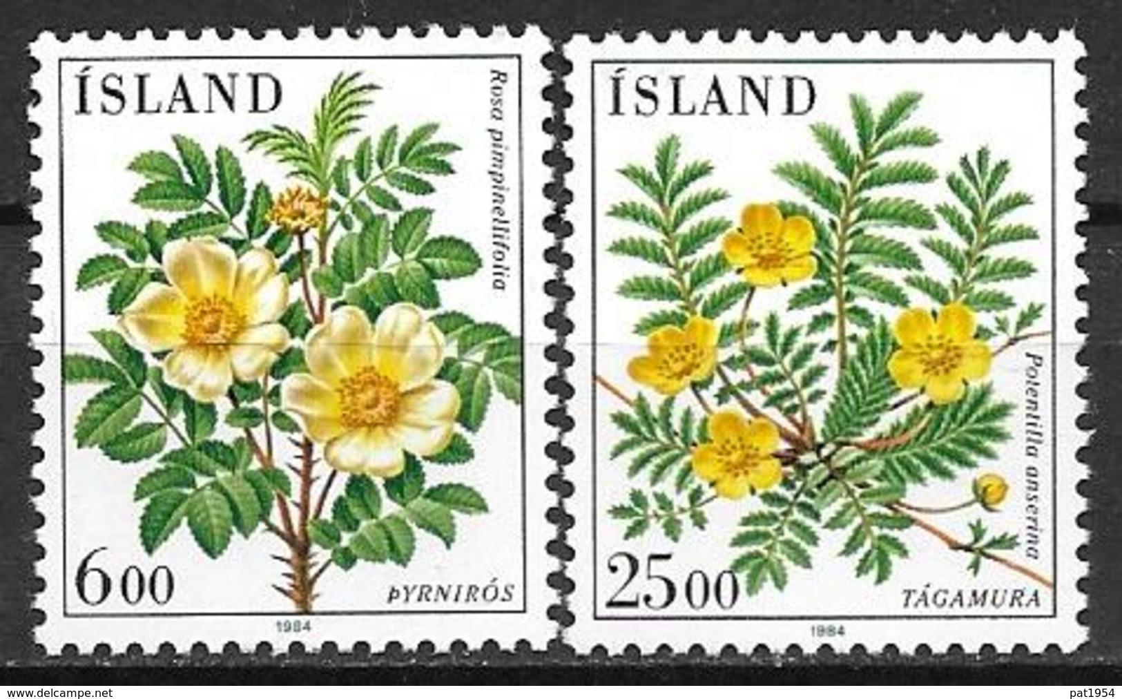 Islande 1984 N° 565/566 Neufs Fleurs - Nuovi