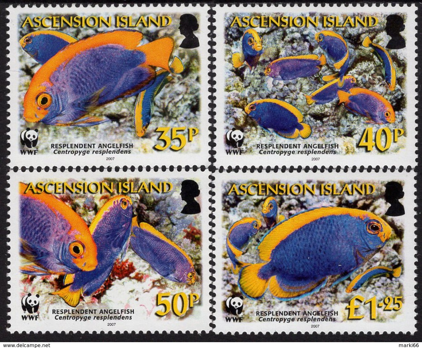 Ascension Island - 2007 - WWF - Resplendent Angelfish - Mint Stamp Set - Ascension (Ile De L')
