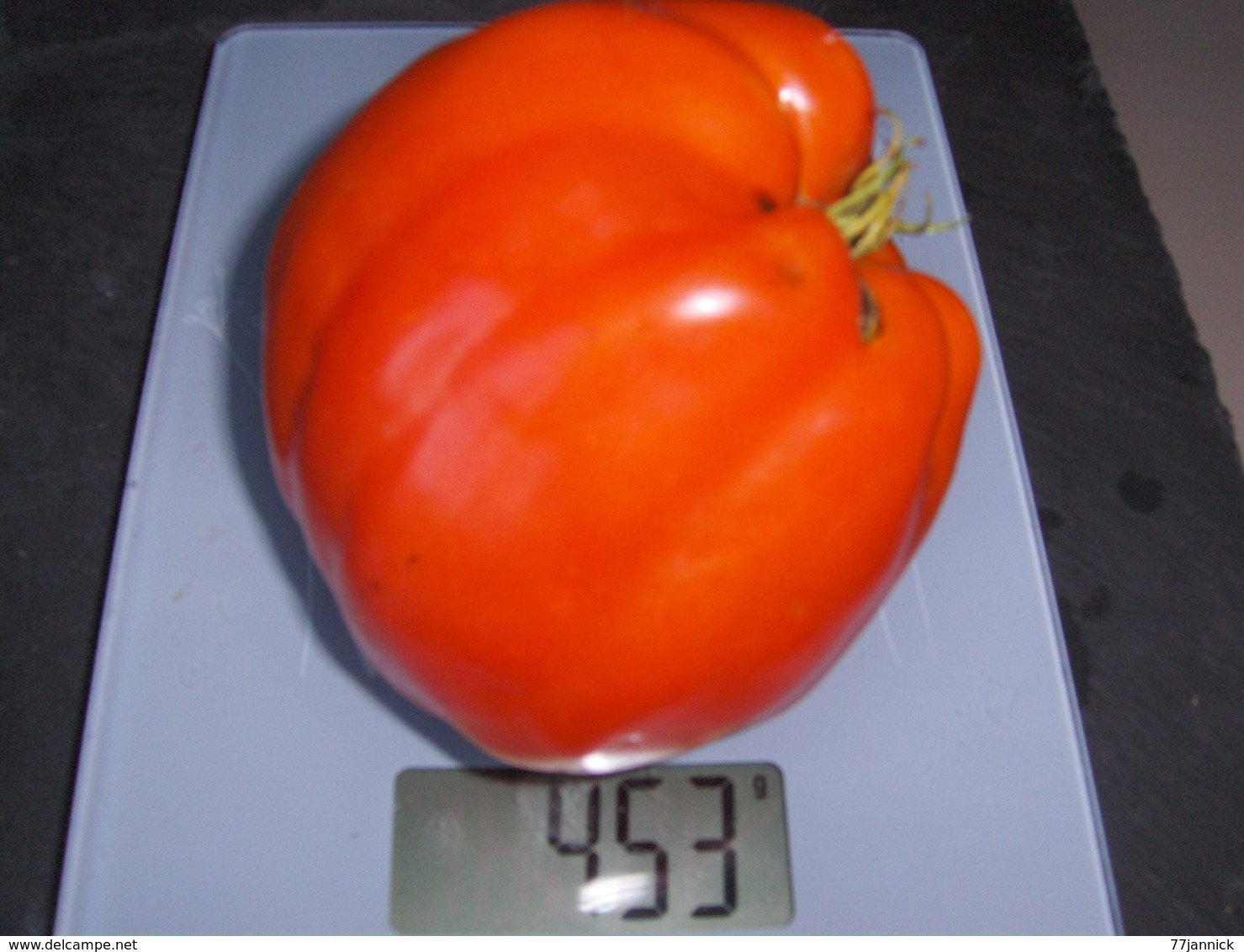 30 Graines Tomates COEUR DE BOEUF BIO - 2. Graines