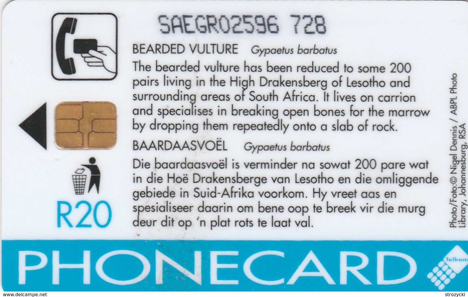 South Africa - Birds Of Prey - Bearded Vulture - Afrique Du Sud