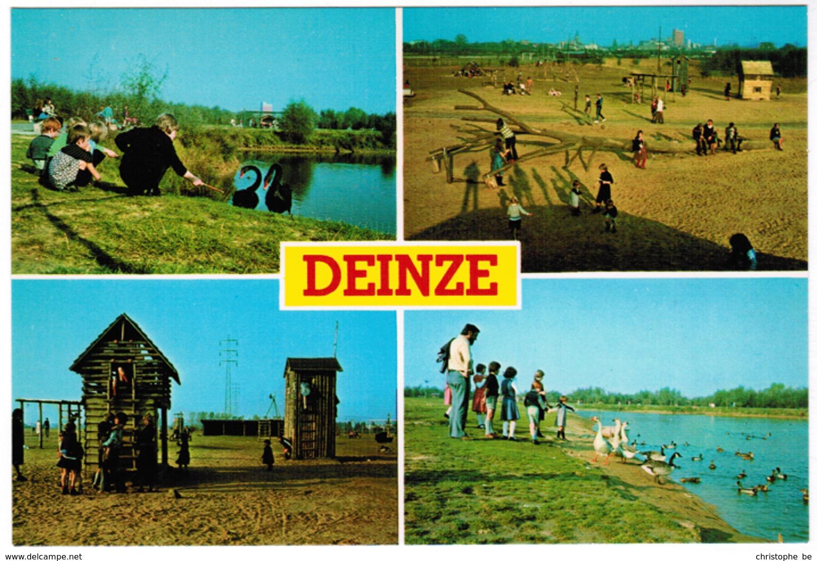 Deinze Brielmeersen Siervijver (pk55643) - Deinze