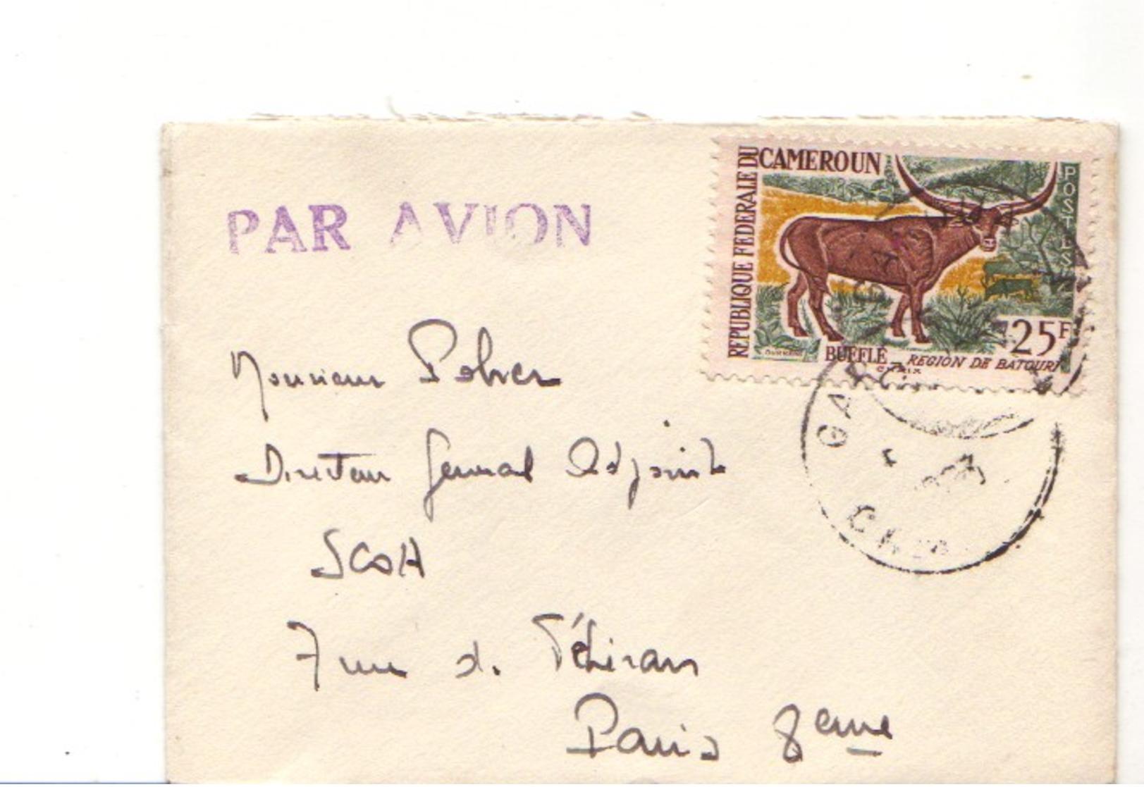 CAMEROUN :  1963 - Lettre Par Avion Pour La France - Bufle - Cameroun (1960-...)