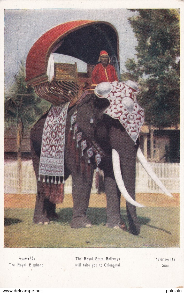 The Royal Elephant Thailande Siam Thailand Published By The Royal State Railway Staterails Séries G 6 - Thailand