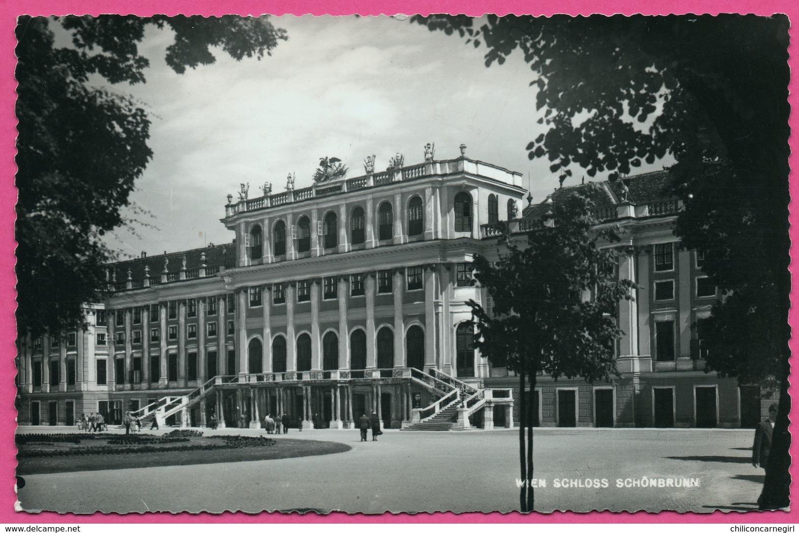 Cp Dentelée - Wien Schloss Schonbrunn - Animée - Verlag IKARUS - 1940 - Château De Schönbrunn