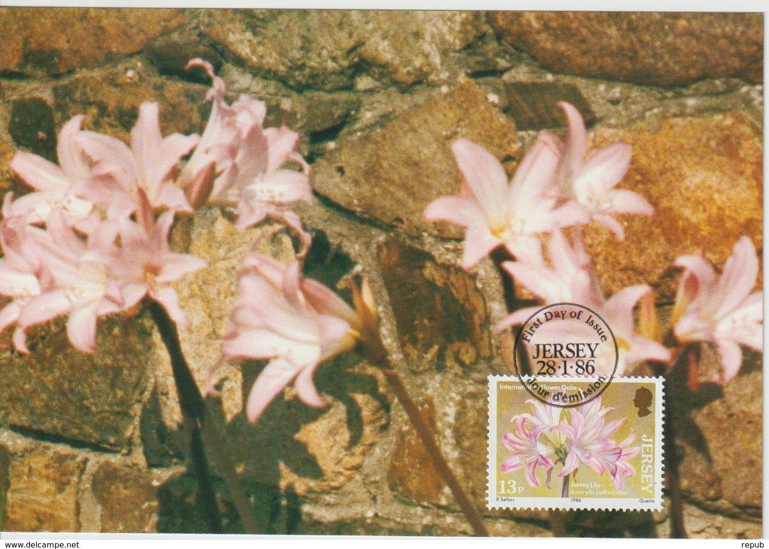 Jersey Carte Maximum 1985 Fleurs Lis 366 - Jersey