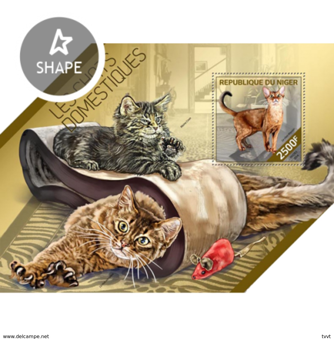 Niger, 2014. [nig14203] Cats (m\s+s\s) - Hauskatzen