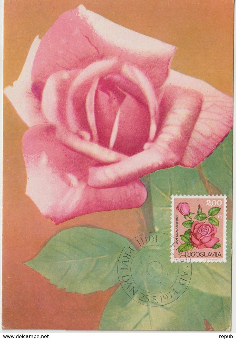Yougoslavie Carte Maximum Fleurs 1974 Rose 1444 - Cartes-maximum